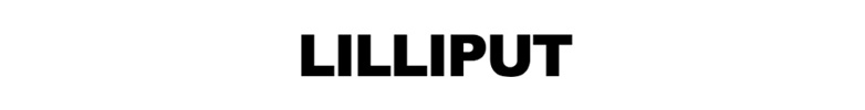 Lilliput Monitors Teleprompters Software & Hardware