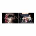 Kino Flo DIV-201-230 Diva-Lite 201, 230VAC