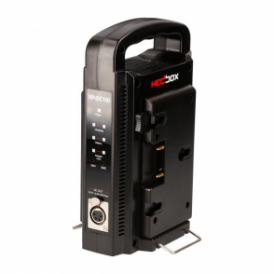 RP-DC100A Intelligent Dual Digital Professional Battery Charger