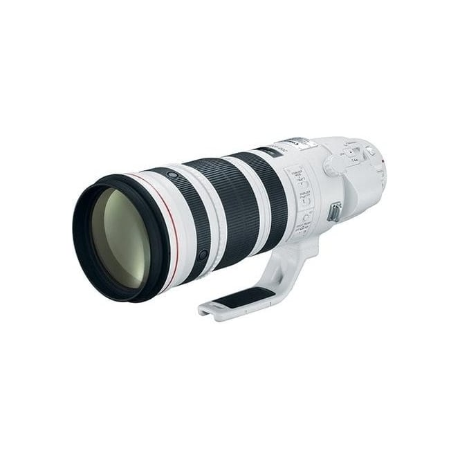 Canon EF 200-400mm f/4L IS USM Telephoto Zoom Lens