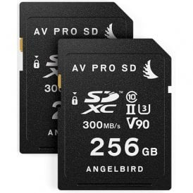 Match Pack for the Panasonic EVA1 (2 x 256GB)